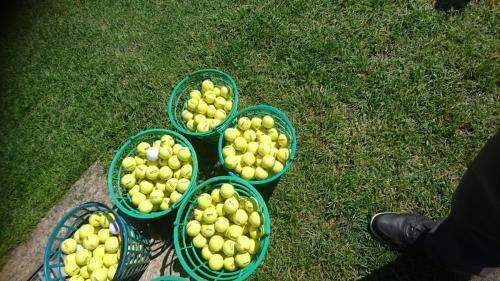 Golfclub Gams Werdenberg 21