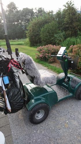 Golfclub Gams Werdenberg 24